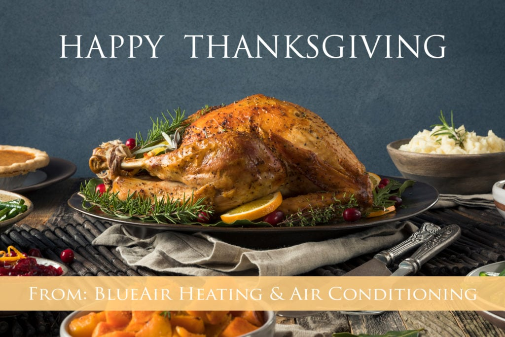 2018 Happy Thanksgiving from BlueAir.